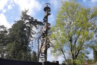 Wat doet metershoge wenteltrap in Zoerselse tuin? Niemand weet er het fijne van