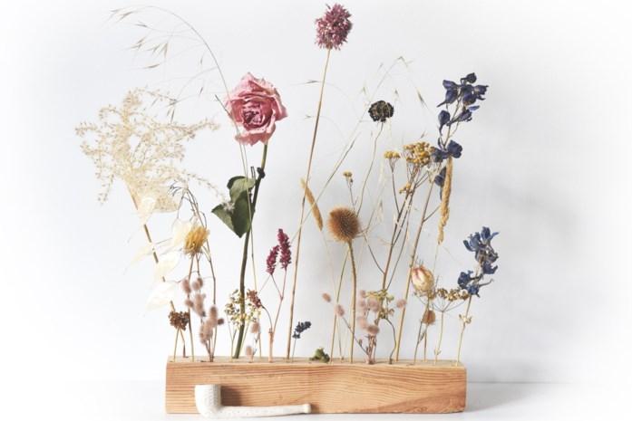 De mooiste droogbloemen staan in de tuin of de berm: zo maak je een prachtig droog boeket