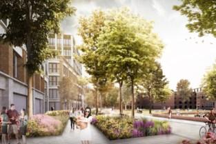 """Masterplan Mariahof botst op weerstand in districtsraad: """"Project werpt schaduw over Oud-Berchem"""""""