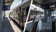 Vernieuwd station van Hasselt krijgt vorm: eerste perron is klaar