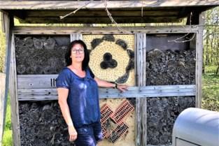 Oppositie vraagt meer insectenhotels aan wandelwegen