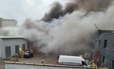 """Loodsbrand in Deurne snel onder controle: """"Leek groter dan het eigenlijk was"""""""