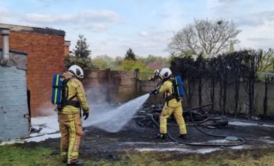 Tuinhuis in Bornem gaat helemaal in vlammen op