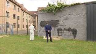 """Graffitispuiters viseren agent in haatboodschap op muur: """"Laf en degoutant"""""""