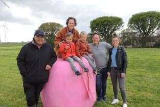Loenhouts gras verpakt in roze balen als eerbetoon aan overleden collega's