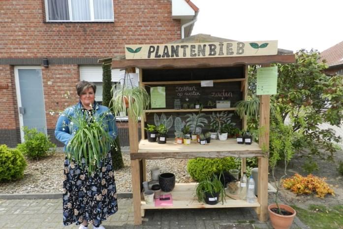 Cindy opent plantenbieb aan haar woning in Minderhout