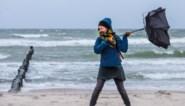 Storm trekt over België: windkracht 9 gemeten boven Noordzee, noodnummer 1722 geactiveerd