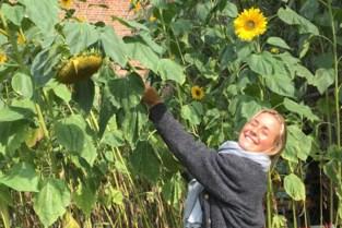 """Twee jaar na moord op Julie Van Espen: """"Geef vandaag een bloemetje aan iemand in je omgeving"""""""