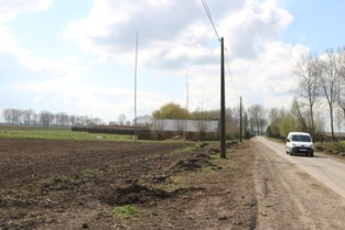 Straffen met uitstel voor cannabiskwekers in de polder