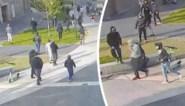 """Geweld tegen agenten dreigt Brusselse politie te veel te worden: """"Ingrijpen. Voordat er doden vallen"""""""