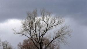 Wisselvallige dag met kans op onweer