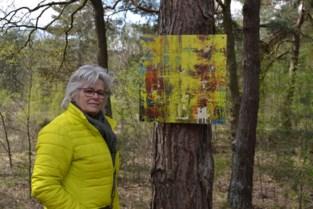 BuitenBeeld stelt kunstwerken tentoon op negen locaties in de gemeente