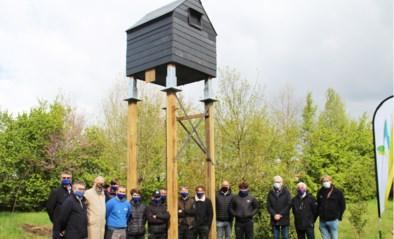 """'Vleermuishotel' opent in arboretum: """"De dieren kunnen steuntje in de rug gebruiken"""""""