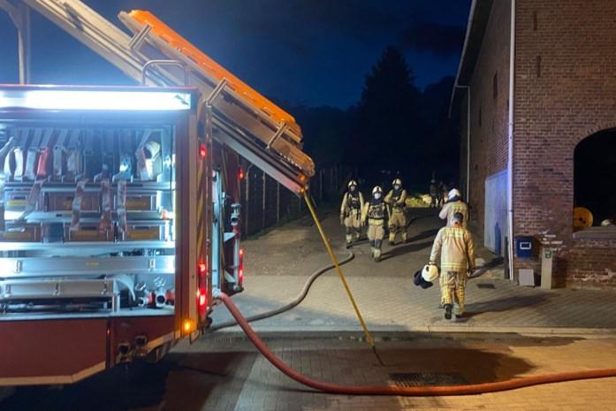 Snelle reactie van buurman voorkomt grote brand bij houthandel in Sluizen