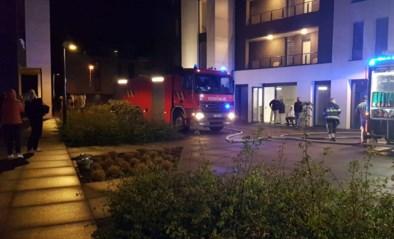 Auto vliegt in brand in parkeergarage van appartement in Zutendaal