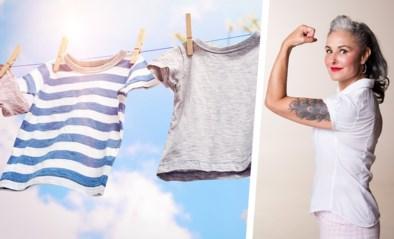 Goedkoper en frisser: onze huishoudexperte Zamarra Kok geeft 5 redenen om de was buiten te drogen