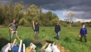 Natuurpunt neemt 11 hectare waardevolle Zennebeemden in beheer