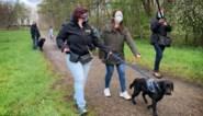 Assistentiehonden mogen voortaan vrij in bos lopen