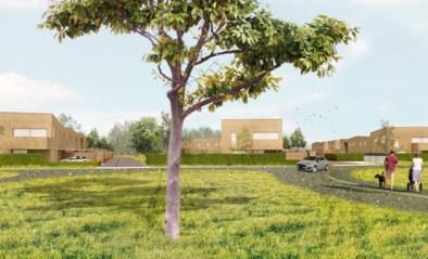 """Eerste schetsen van nieuwe woonwijk in Driehoeven: """"Kwalitatief en in strijd tegen armoede"""""""
