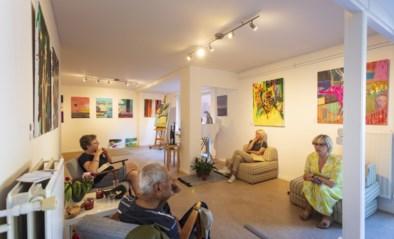 Artiestentoer in Tervuren zet lokale kunstenaars in de picture