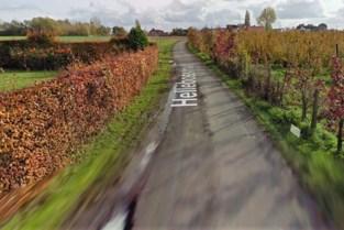 Hellebosstraat mag niet achterblijven bij heraanleg Egemsesteenweg