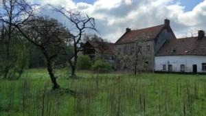 Investeerder gezocht voor renovatie Hobos