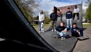 Bijna 400 skaters willen ook skatepark in Wimmertingen