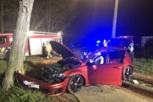 Wagen knalt tegen boom in Lille: 18-jarige passagier overleden, bestuurder legde positieve ademtest af