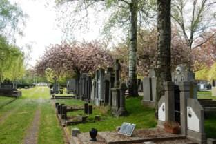 Meer kleur op begraafplaats