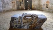 Kunstenares Berlinde De Bruyckere zet deuren van oude kapel in Patershol open