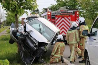 Auto knalt tegen boom langs Eegene