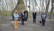 Wilgenkunstwerk krijgt plaats in Prins Mauritspark