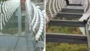 Toerist klampt zich uit alle macht vast wanneer glazen brug het begeeft door rukwind
