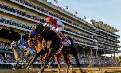 Viagra en slangengif voor paarden: positieve test vlak voor nieuwe dopingwet zorgt voor crisis in paardensport