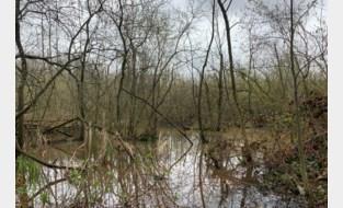 Landschap Turfputten krijgt opknapbeurt