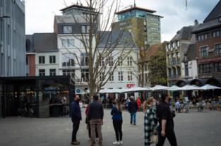 """Zilverlindes op Hasseltse Grote Markt op sterven na dood: """"Misschien zijn ze eenzaam?"""""""