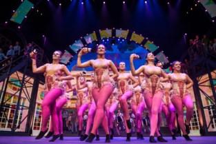 Zoo zoekt dansers voor nieuwe musical