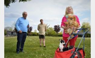 Open VLD pleit voor begraafplaats voor huisdieren
