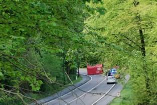 Motorrijder (58) komt om na aanrijding met vrachtwagen