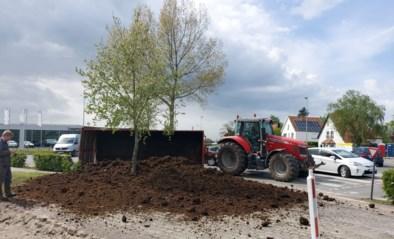 Enorme verkeershinder nadat aanhangwagen tractor met mest kantelt op rotonde