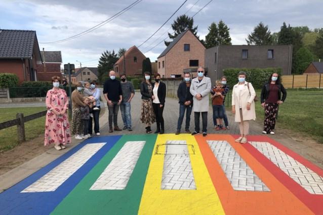 Regenboogzebrapaden geven kleur aan heel Lille