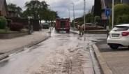 Brandweer ruimt lang modderspoor in Hoeselt op