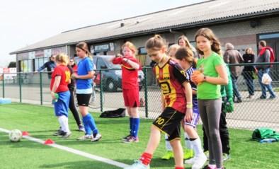 Voetbal Vlaanderen investeert in diversiteit: meer meisjes, meer +55, meer G-voetbal en meer (vrouwelijke) trainers