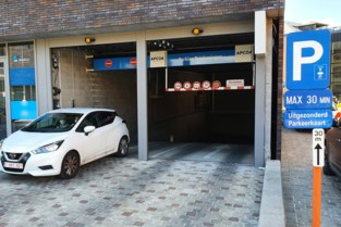 """Kritiek op goedkoper parkeertarief voor gemeentebestuur en ambtenaren: """"Niet meer van deze tijd"""""""