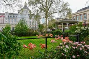 Flamingo's na maanden ophokplicht weer buiten