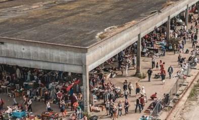 De concerten zijn terug: Democrazy organiseert 15 avonden onder de loods van DOK