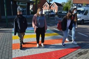 Gemeente zet met regenboogzebrapad strijd voor homorechten in de kijker