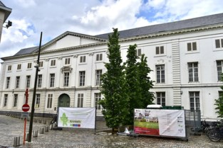 Buitengevels van aartsbisschoppelijk paleis gaan in steigers