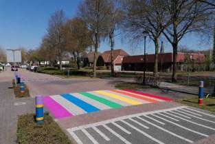 Baarle-Hertog schildert regenboogzebrapad in Nederland