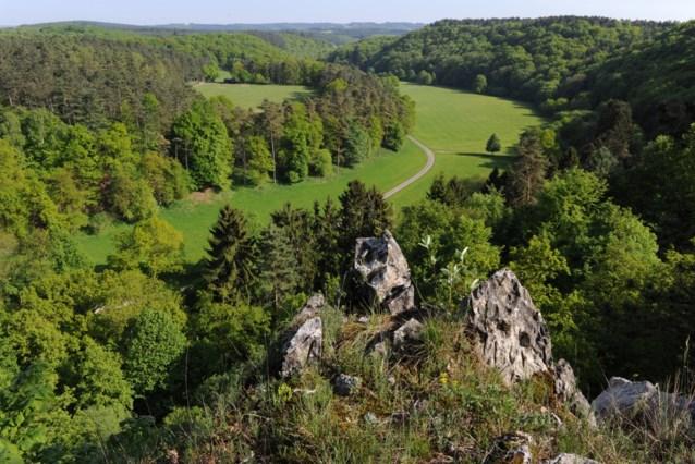 Monniken krijgen ook in beroep gelijk in strijd tegen multinational: 'heilig water' van Rochefort lijkt gered